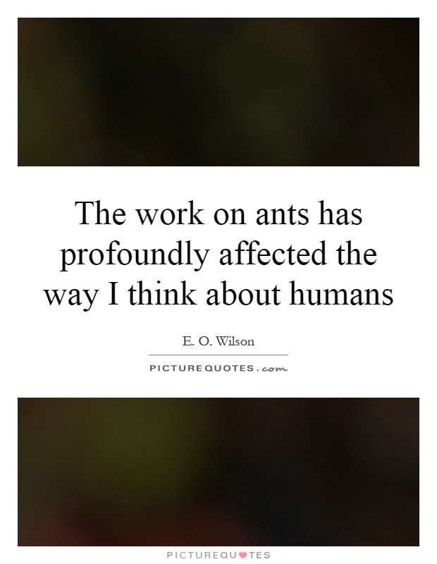 The work on ants has profoundly affected the way I think about humans Picture Quote #1