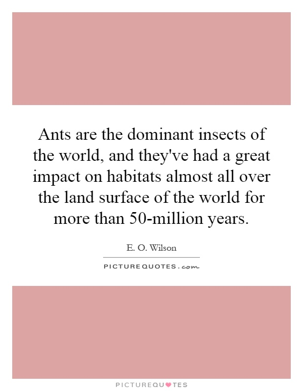 Ants are the dominant insects of the world, and they've had a great impact on habitats almost all over the land surface of the world for more than 50-million years Picture Quote #1