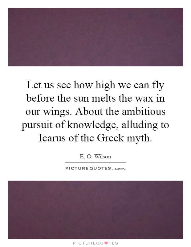 Let us see how high we can fly before the sun melts the wax in our wings. About the ambitious pursuit of knowledge, alluding to Icarus of the Greek myth Picture Quote #1