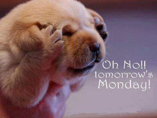 Oh no!! Tomorrow's monday Picture Quote #1