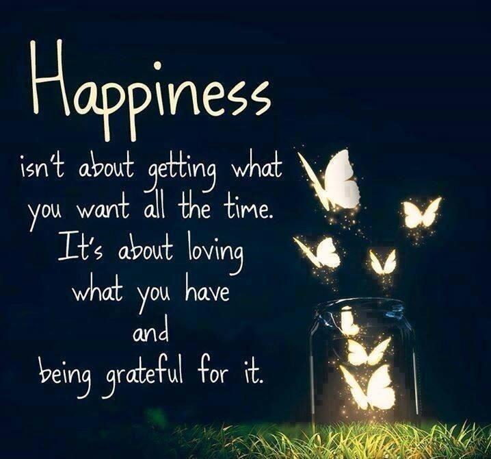 Happiness isn't about getting what you want all the time. it's about loving what you have and being grateful for it Picture Quote #1