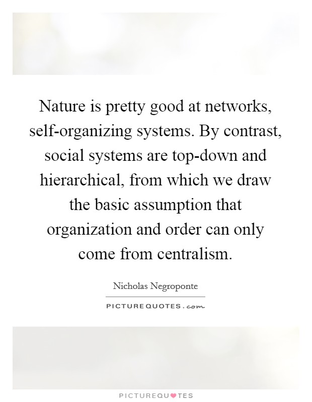 Nature is pretty good at networks, self-organizing systems. By contrast, social systems are top-down and hierarchical, from which we draw the basic assumption that organization and order can only come from centralism Picture Quote #1