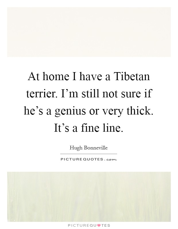 At home I have a Tibetan terrier. I'm still not sure if he's a genius or very thick. It's a fine line Picture Quote #1