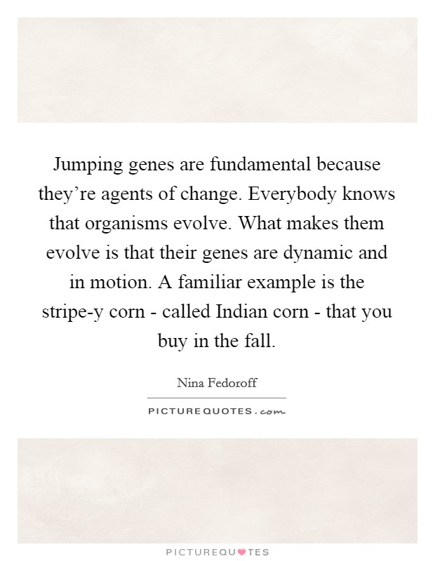 Jumping genes are fundamental because they're agents of change. Everybody knows that organisms evolve. What makes them evolve is that their genes are dynamic and in motion. A familiar example is the stripe-y corn - called Indian corn - that you buy in the fall Picture Quote #1