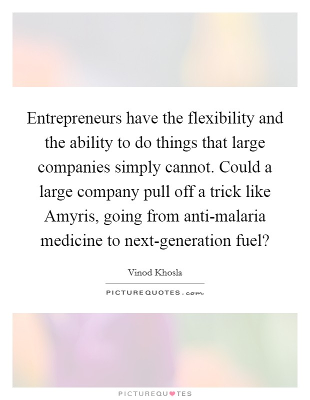 Entrepreneurs have the flexibility and the ability to do things that large companies simply cannot. Could a large company pull off a trick like Amyris, going from anti-malaria medicine to next-generation fuel? Picture Quote #1