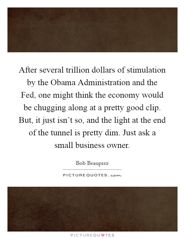 After several trillion dollars of stimulation by the Obama Administration and the Fed, one might think the economy would be chugging along at a pretty good clip. But, it just isn't so, and the light at the end of the tunnel is pretty dim. Just ask a small business owner Picture Quote #1