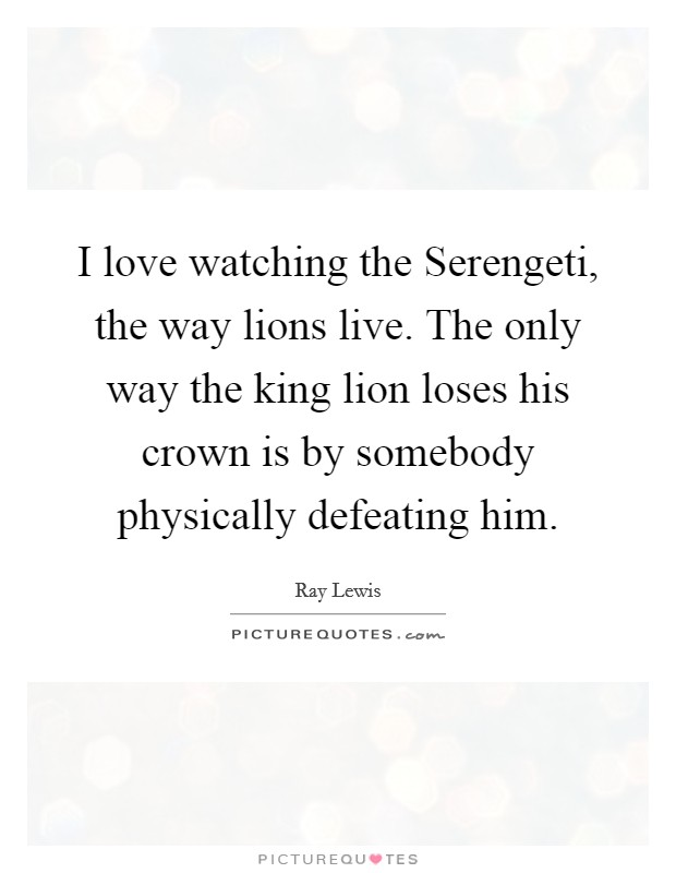 I love watching the Serengeti, the way lions live. The only way the king lion loses his crown is by somebody physically defeating him Picture Quote #1