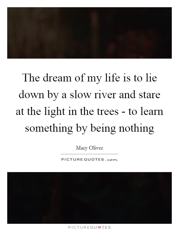 The dream of my life is to lie down by a slow river and stare at the light in the trees - to learn something by being nothing Picture Quote #1