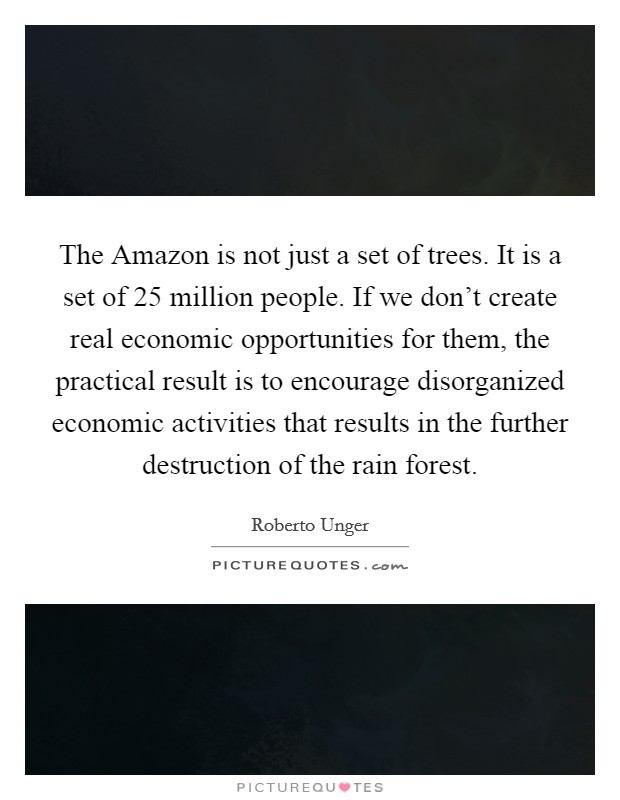 The Amazon is not just a set of trees. It is a set of 25 million people. If we don't create real economic opportunities for them, the practical result is to encourage disorganized economic activities that results in the further destruction of the rain forest Picture Quote #1