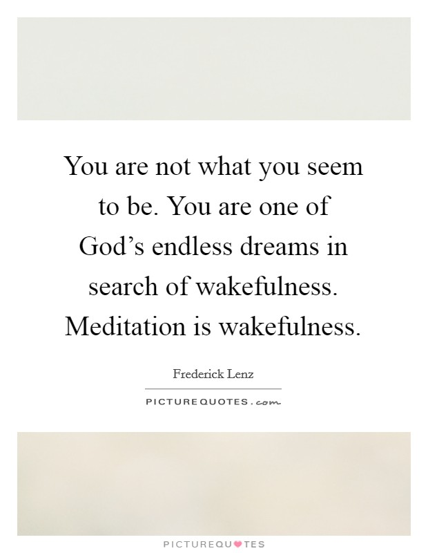 You are not what you seem to be. You are one of God's endless dreams in search of wakefulness. Meditation is wakefulness Picture Quote #1