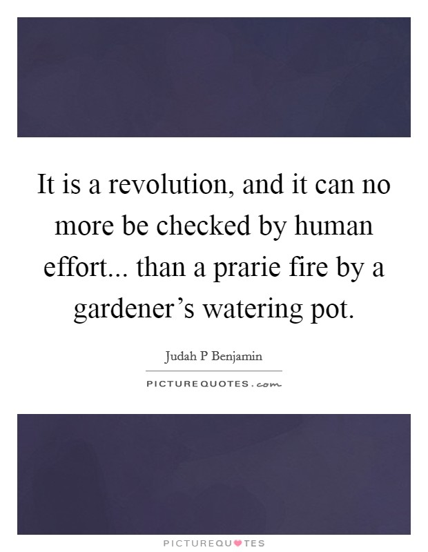 It is a revolution, and it can no more be checked by human effort... than a prarie fire by a gardener's watering pot Picture Quote #1