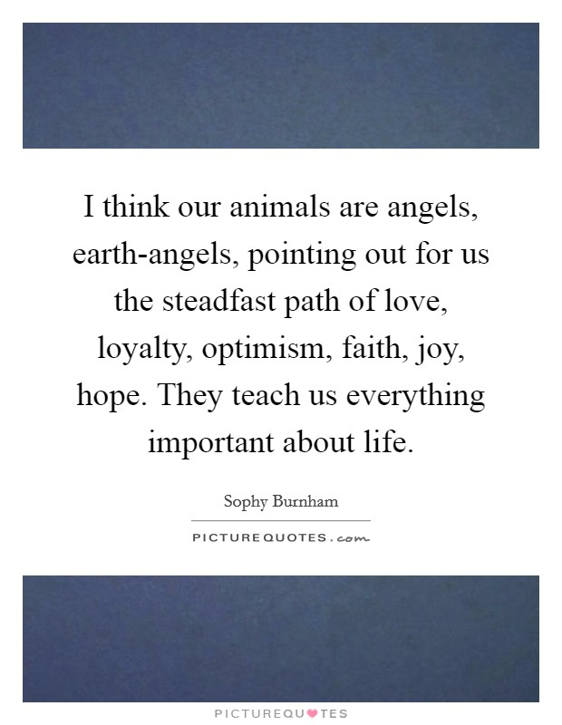 I think our animals are angels, earth-angels, pointing out for us the steadfast path of love, loyalty, optimism, faith, joy, hope. They teach us everything important about life Picture Quote #1