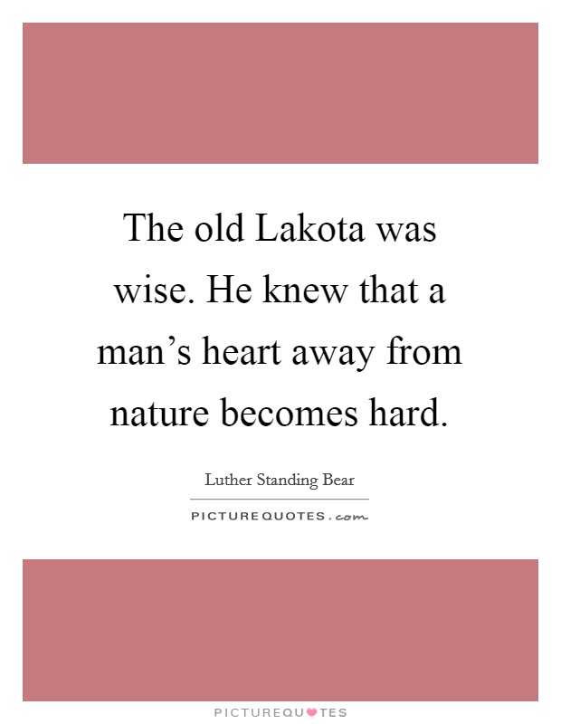 The old Lakota was wise. He knew that a man's heart away from nature becomes hard Picture Quote #1