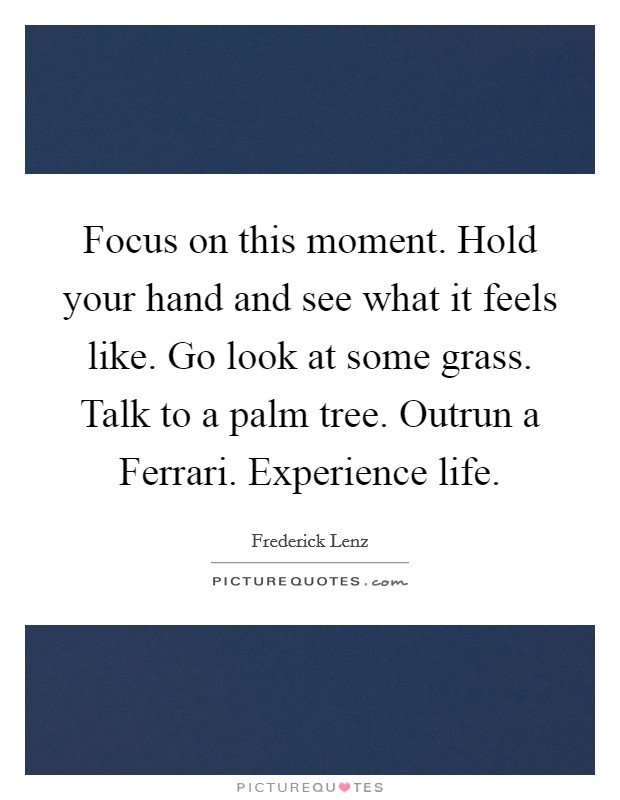 Focus on this moment. Hold your hand and see what it feels like. Go look at some grass. Talk to a palm tree. Outrun a Ferrari. Experience life Picture Quote #1