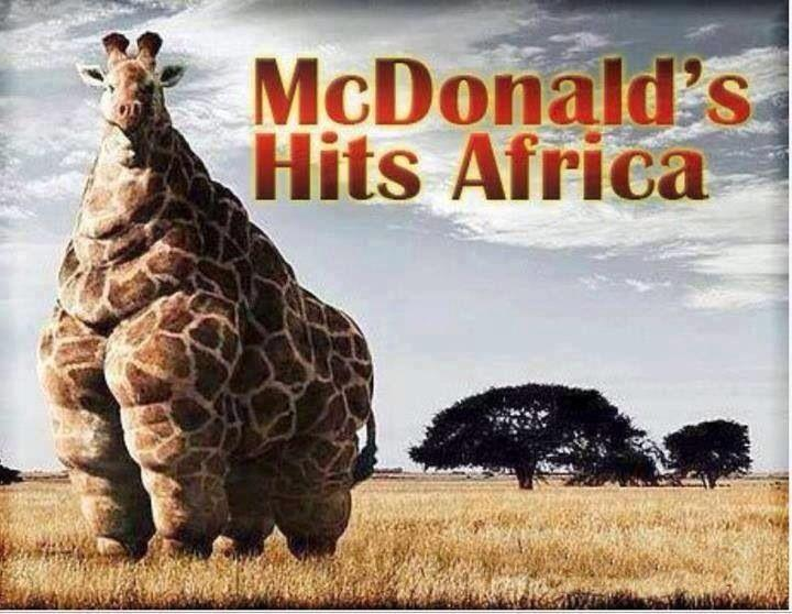 McDonald's hits Africa Picture Quote #1