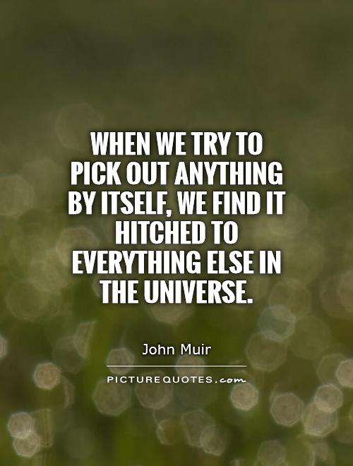 When we try to pick out anything by itself, we find it hitched to everything else in the universe Picture Quote #1