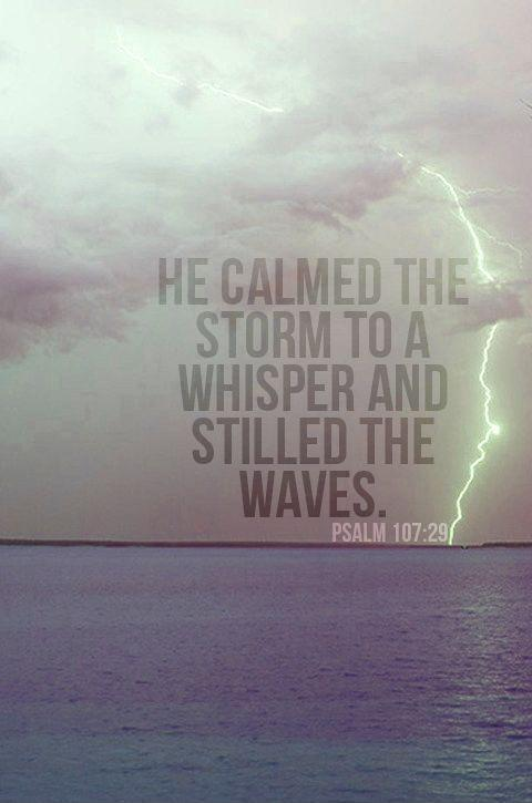 He calmed the storm to a whisper and stilled the waves Picture Quote #1
