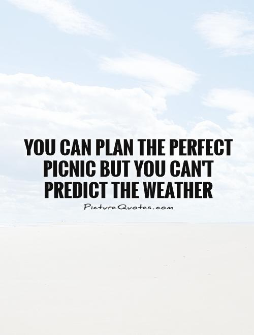 You can plan the perfect picnic but you can't predict the weather Picture Quote #1