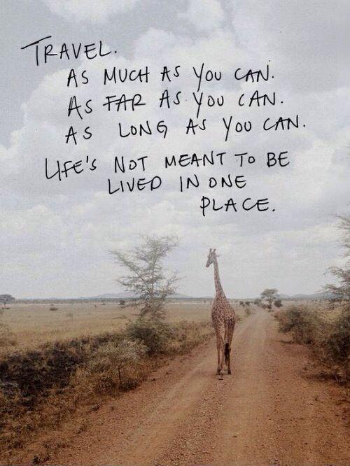 Travel. As much as you can. As far as you can. As long as you can. Life's not meant to be lived in one place Picture Quote #1
