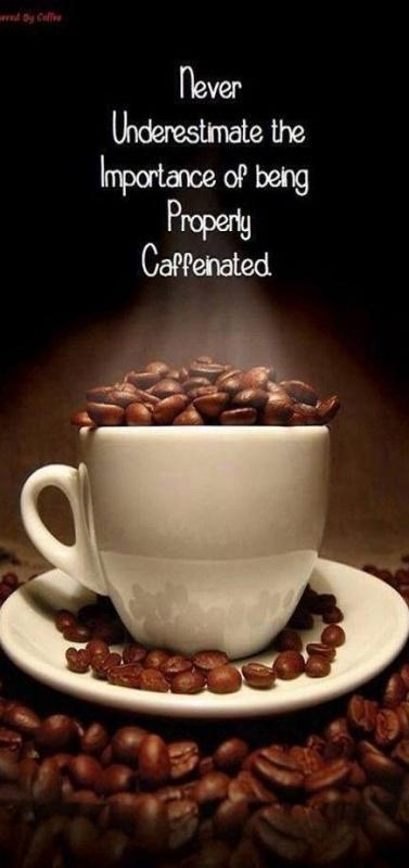 Never underestimate the importance of being properly caffinated Picture Quote #1