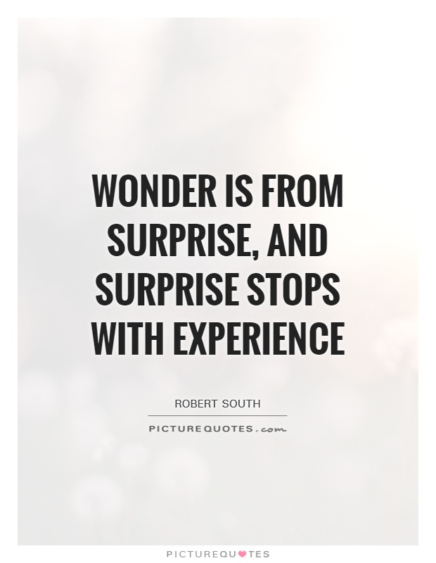 Wonder is from surprise, and surprise stops with experience Picture Quote #1