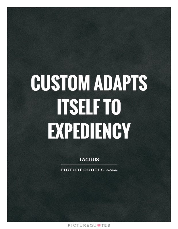 Custom adapts itself to expediency Picture Quote #1