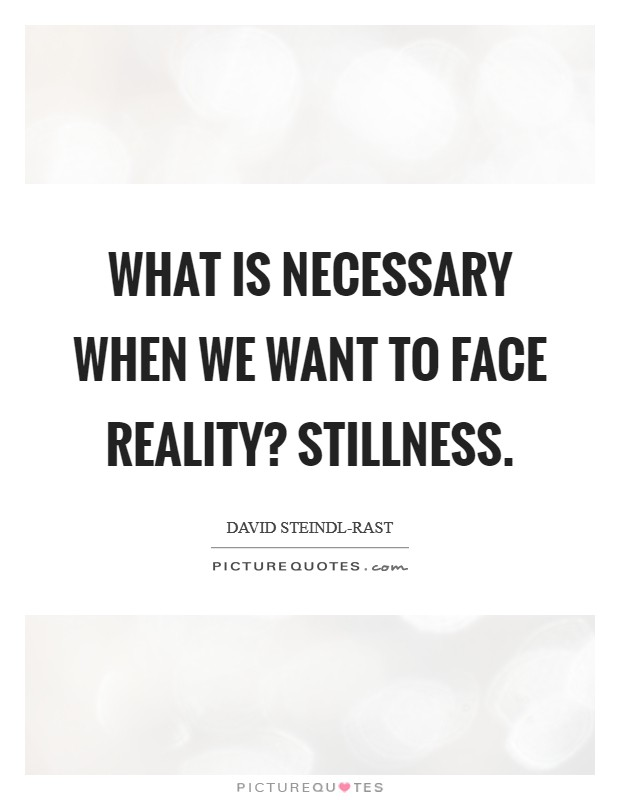 What is necessary when we want to face reality? Stillness Picture Quote #1