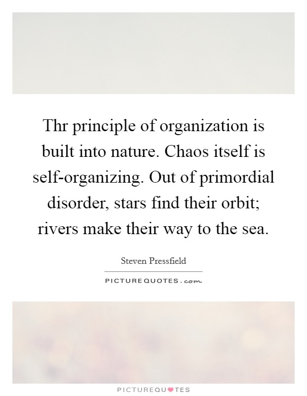 Thr principle of organization is built into nature. Chaos itself is self-organizing. Out of primordial disorder, stars find their orbit; rivers make their way to the sea Picture Quote #1