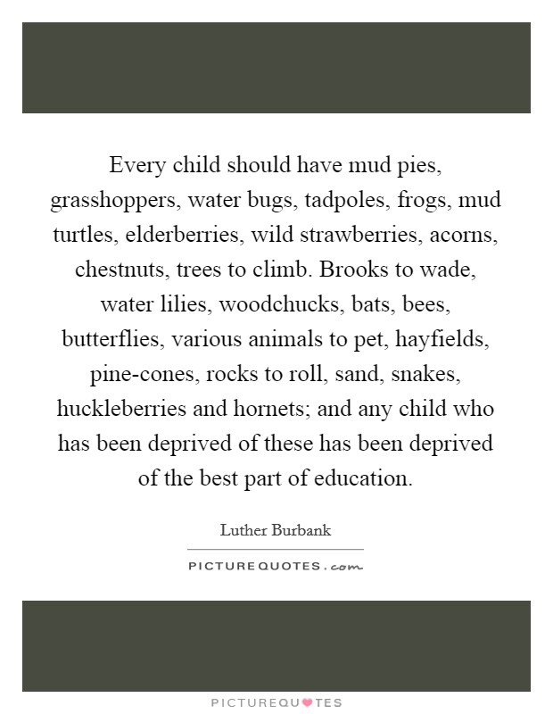Every child should have mud pies, grasshoppers, water bugs, tadpoles, frogs, mud turtles, elderberries, wild strawberries, acorns, chestnuts, trees to climb. Brooks to wade, water lilies, woodchucks, bats, bees, butterflies, various animals to pet, hayfields, pine-cones, rocks to roll, sand, snakes, huckleberries and hornets; and any child who has been deprived of these has been deprived of the best part of education Picture Quote #1