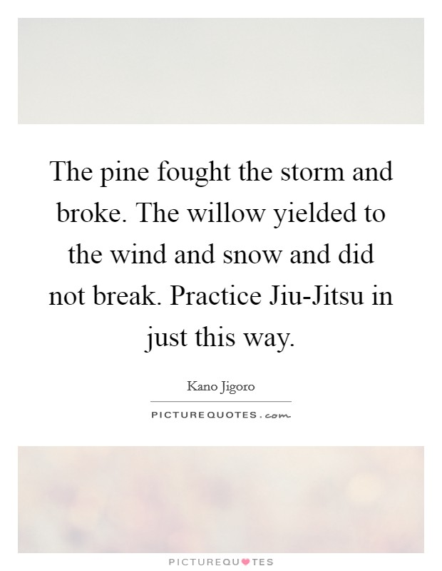 The pine fought the storm and broke. The willow yielded to the wind and snow and did not break. Practice Jiu-Jitsu in just this way Picture Quote #1