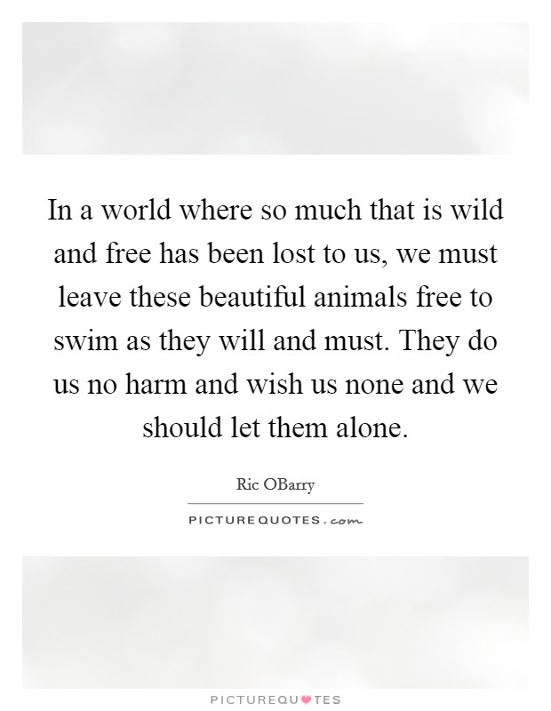 In a world where so much that is wild and free has been lost to us, we must leave these beautiful animals free to swim as they will and must. They do us no harm and wish us none and we should let them alone Picture Quote #1