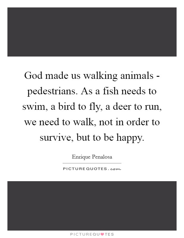 God made us walking animals - pedestrians. As a fish needs to swim, a bird to fly, a deer to run, we need to walk, not in order to survive, but to be happy Picture Quote #1