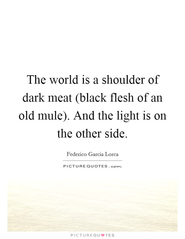 The world is a shoulder of dark meat (black flesh of an old mule). And the light is on the other side Picture Quote #1