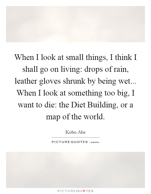 When I look at small things, I think I shall go on living: drops of rain, leather gloves shrunk by being wet... When I look at something too big, I want to die: the Diet Building, or a map of the world Picture Quote #1