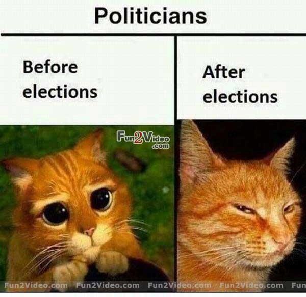 Funny Politician Quote 1 Picture Quote #1