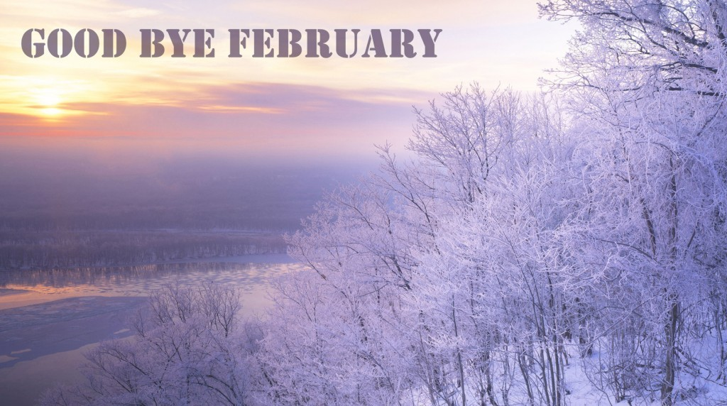 Happy New Month Quote 1 Picture Quote #1