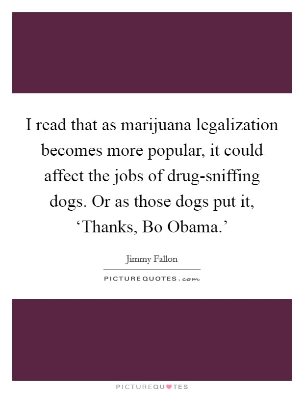 I read that as marijuana legalization becomes more popular, it could affect the jobs of drug-sniffing dogs. Or as those dogs put it, 'Thanks, Bo Obama.' Picture Quote #1