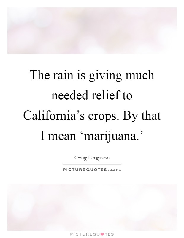 The rain is giving much needed relief to California's crops. By that I mean 'marijuana.' Picture Quote #1