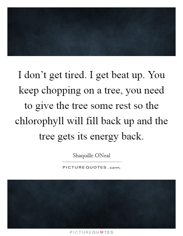 I don't get tired. I get beat up. You keep chopping on a tree, you need to give the tree some rest so the chlorophyll will fill back up and the tree gets its energy back Picture Quote #1