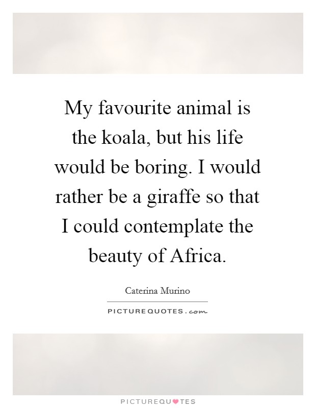 My favourite animal is the koala, but his life would be boring. I would rather be a giraffe so that I could contemplate the beauty of Africa Picture Quote #1
