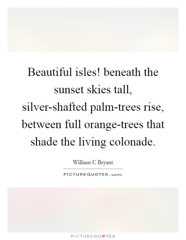 Beautiful isles! beneath the sunset skies tall, silver-shafted palm-trees rise, between full orange-trees that shade the living colonade Picture Quote #1