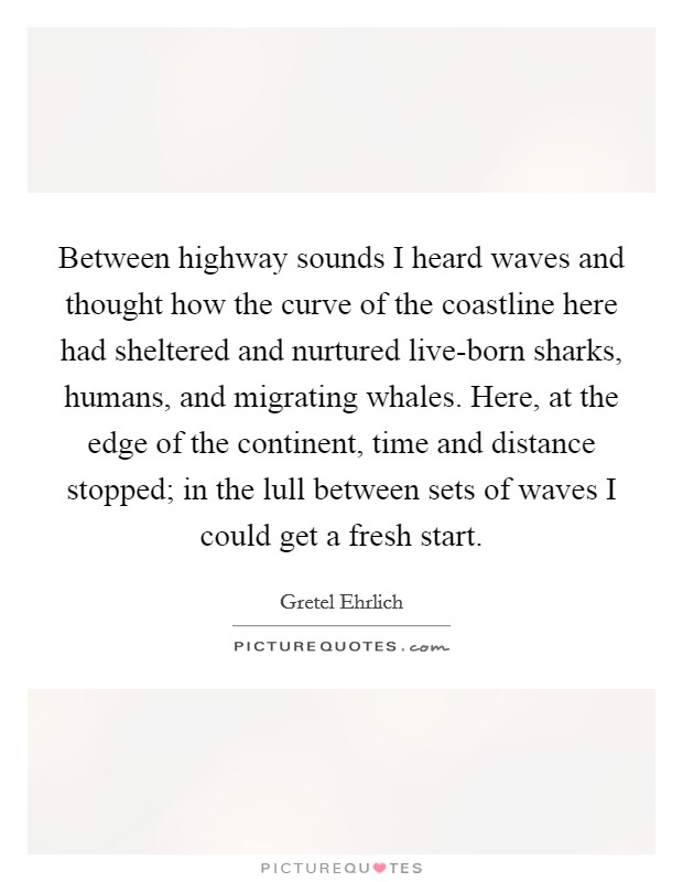 Between highway sounds I heard waves and thought how the curve of the coastline here had sheltered and nurtured live-born sharks, humans, and migrating whales. Here, at the edge of the continent, time and distance stopped; in the lull between sets of waves I could get a fresh start Picture Quote #1