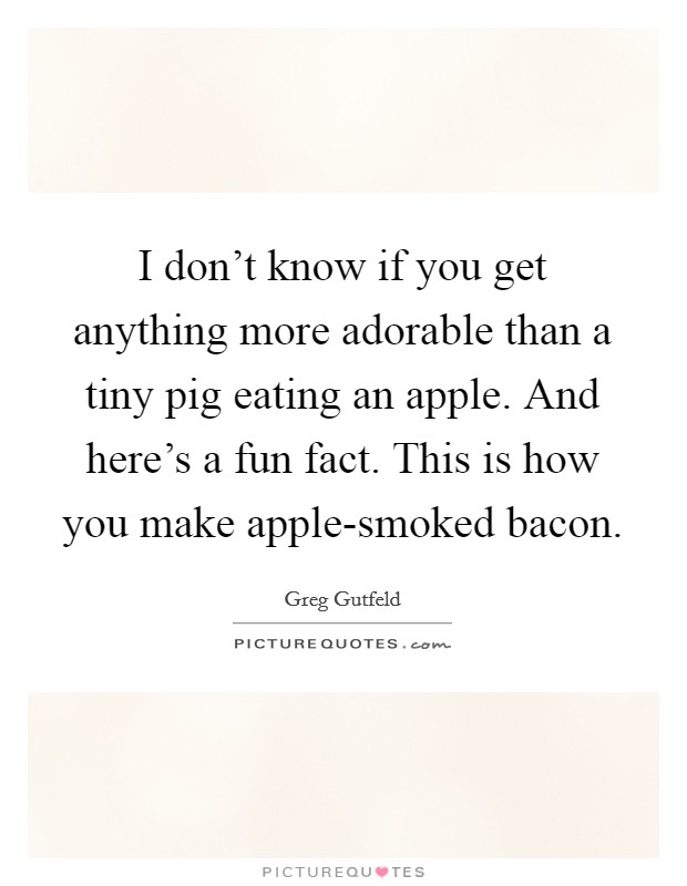 I don't know if you get anything more adorable than a tiny pig eating an apple. And here's a fun fact. This is how you make apple-smoked bacon Picture Quote #1
