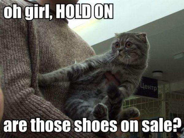 Oh girl, HOLD ON, are those shoes on sale? Picture Quote #1
