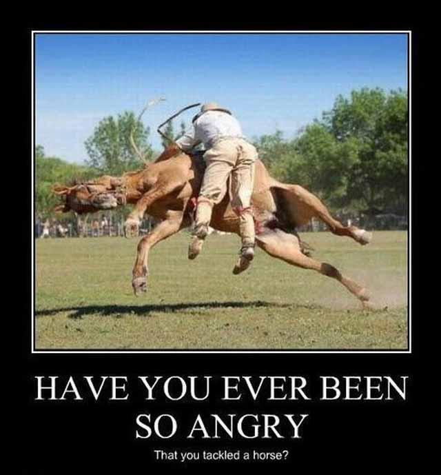 Have you ever been so angry that you tackled a horse Picture Quote #1