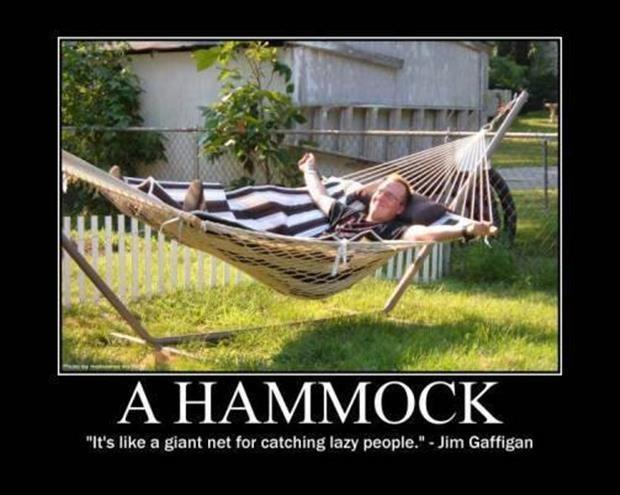 A hammock. It's like a giant net for catching lazy people Picture Quote #1