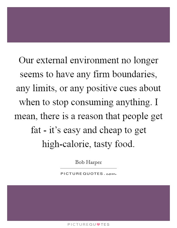 Our external environment no longer seems to have any firm boundaries, any limits, or any positive cues about when to stop consuming anything. I mean, there is a reason that people get fat - it's easy and cheap to get high-calorie, tasty food Picture Quote #1