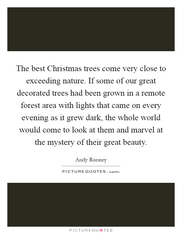 The best Christmas trees come very close to exceeding nature. If some of our great decorated trees had been grown in a remote forest area with lights that came on every evening as it grew dark, the whole world would come to look at them and marvel at the mystery of their great beauty Picture Quote #1