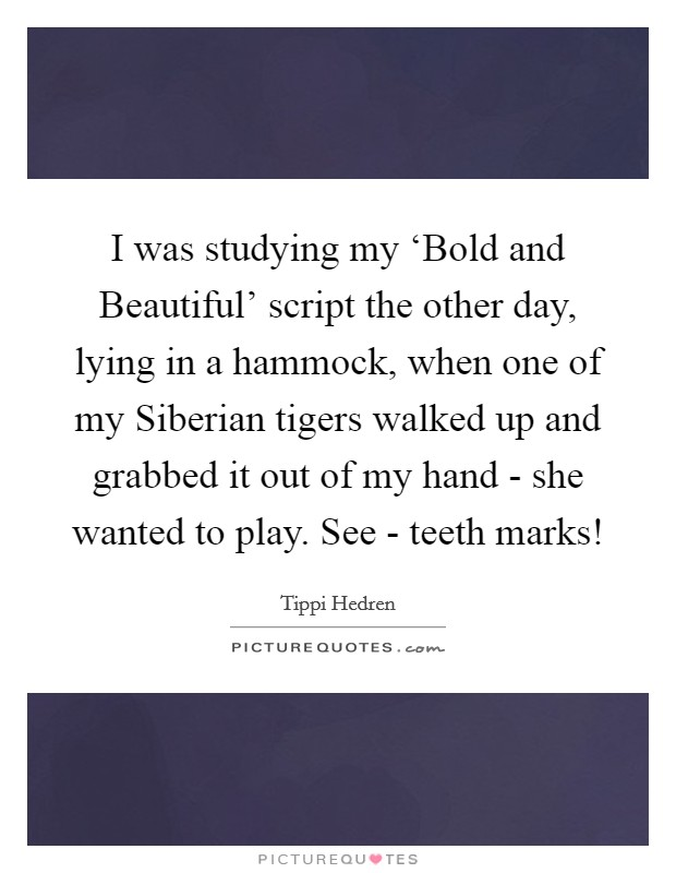 I was studying my 'Bold and Beautiful' script the other day, lying in a hammock, when one of my Siberian tigers walked up and grabbed it out of my hand - she wanted to play. See - teeth marks! Picture Quote #1