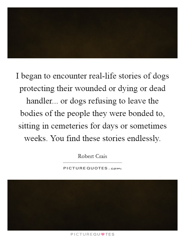 I began to encounter real-life stories of dogs protecting their wounded or dying or dead handler... or dogs refusing to leave the bodies of the people they were bonded to, sitting in cemeteries for days or sometimes weeks. You find these stories endlessly Picture Quote #1